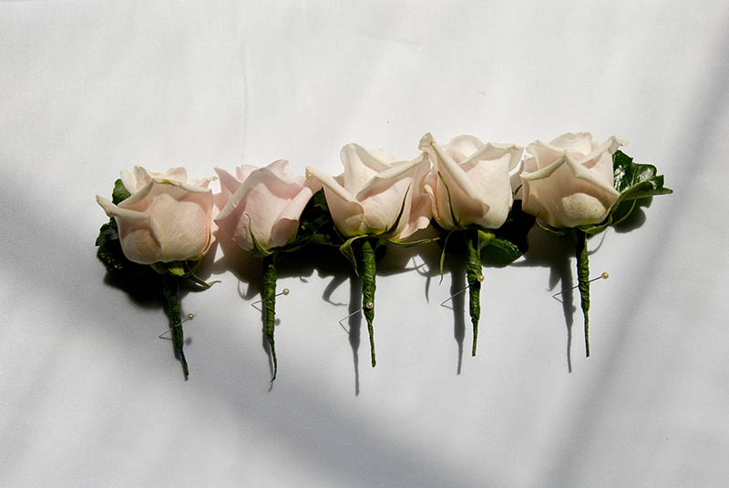 pink rose buttonholes